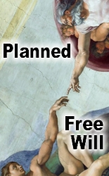 Free Choices are Predestined